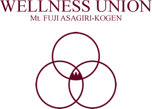 WELLNESS UNION